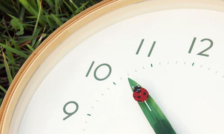 Lemnos Perch時鐘