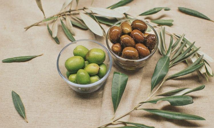 橄欖果果實進行壓榨與精製後才能做出橄欖油